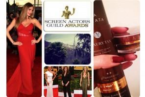 SAG AWARDS 2015 – WHAT A PHENOMENAL NIGHT!